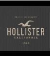 4e32b412d80f9-hollister.png