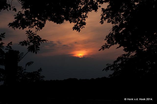 Soort zonsondergang vanuit het bos gezien.