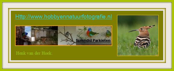 Nieuw webadres per 22 - 09 - 2014.