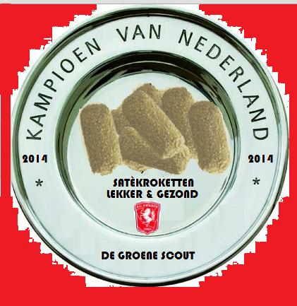 552ea1b71f088-536625327ac84-gouden_scout_1.png