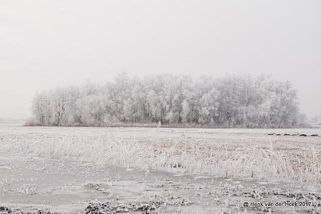 Winter overijssel 2017