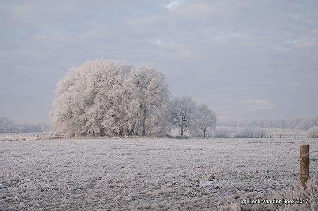 Winter in Drenthe.